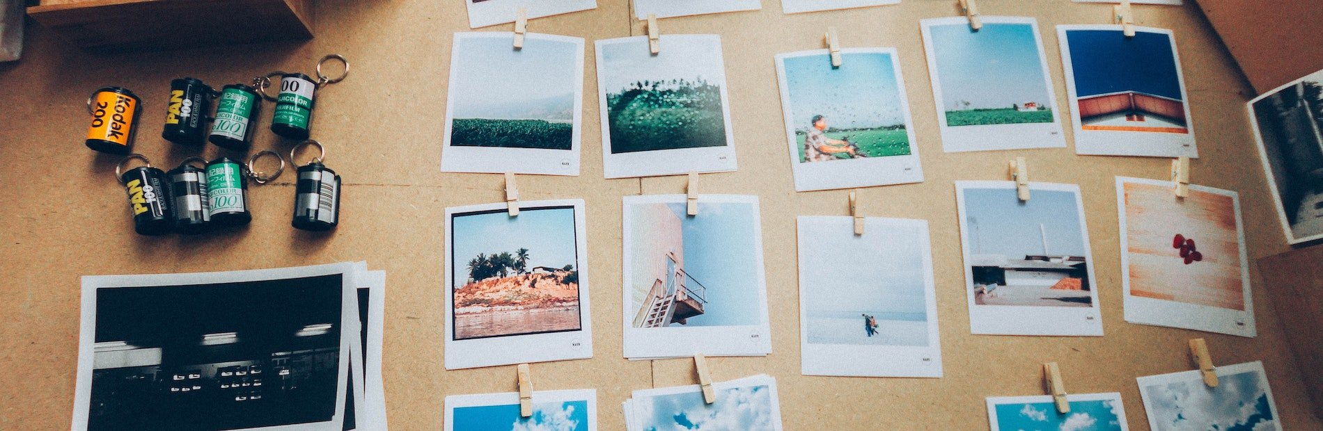 photographs pinned on board